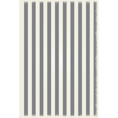 Croom Strips Design Gray/White Indoor/Outdoor Area Rug Rug Size: Rectangle 4 x 6