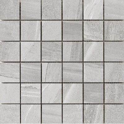 Access 2 x 2 Porcelain Mosaic Tile in Tour