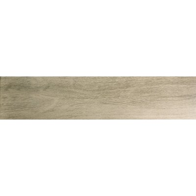 Angeles 9 x 47 Porcelain Wood Look Tile in Cliff