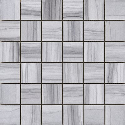 Archive 2 x 2 Porcelain Mosaic Tile in Record