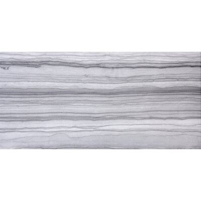 Archive 11 x 23 Porcelain Field Tile in Record