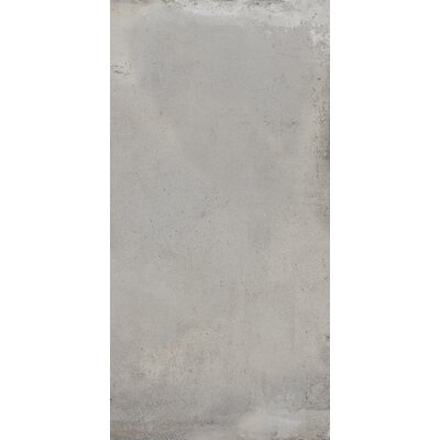 Borigni 12 x 23 Porcelain Field Tile in Gray