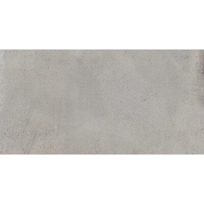 Borigni 18 x 35 Porcelain Field Tile in Gray
