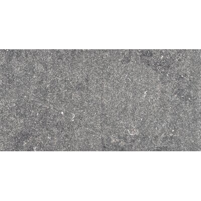 Blue Emotion 12 x 24 Porcelain Field Tile in Dark Flamed