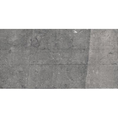 Blue Emotion 18 x 35 Porcelain Field Tile in Dark Matte