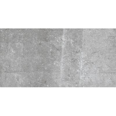 Blue Emotion 18 x 35 Porcelain Field Tile in Matte Gray