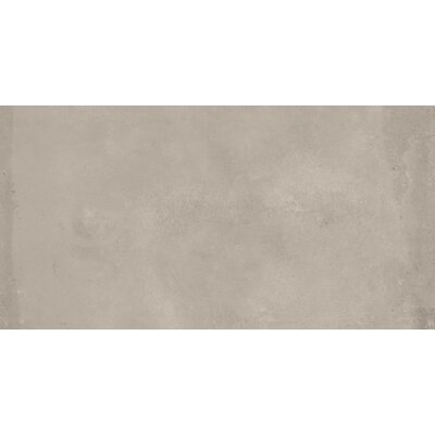 Borigni 18 x 35 Porcelain Field Tile in Beige