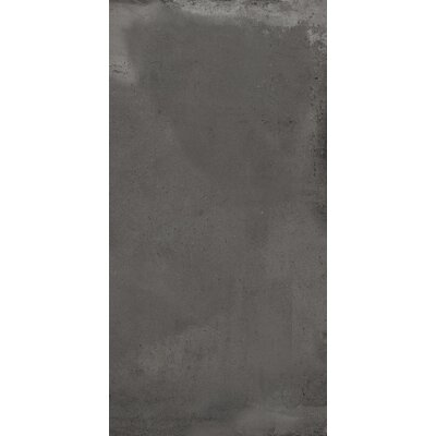 Borigni 12 x 23 Porcelain Field Tile in Black