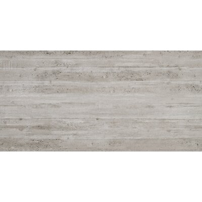 Cassero 24 x 47 Porcelain Field Tile in Gray