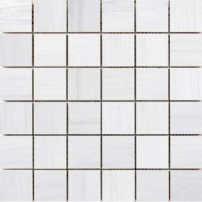 Latitude 2 x 2 Porcelain Mosaic Tile in White