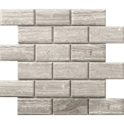 Metro Bevel 2 x 4 Marble Mosaic Tile in Gray
