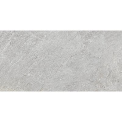Milestone 24 x 47 Porcelain Field Tile in Moon