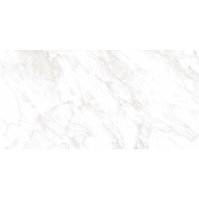 Residenza Glazed 12 x 23 Ceramic Field Tile in Calacata