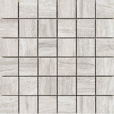 Terrane 2 x 2 Porcelain Mosaic Tile in Beige