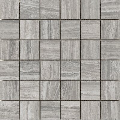 Terrane 2 x 2 Porcelain Mosaic Tile in Gray
