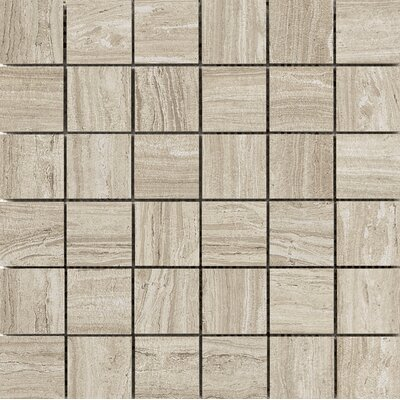 Terrane 2 x 2 Porcelain Mosaic Tile in Taupe