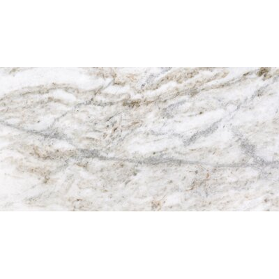 Kalta 16 x 32 Marble Field Tile in Fiore