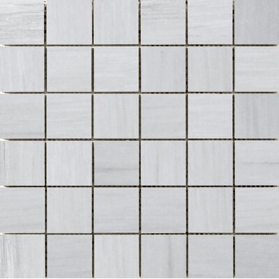 Latitude 2 x 2 Porcelain Mosaic Tile in Gray