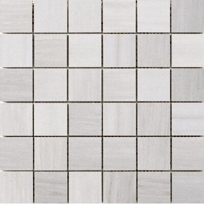Latitude 2 x 2 Porcelain Mosaic Tile in Ivory