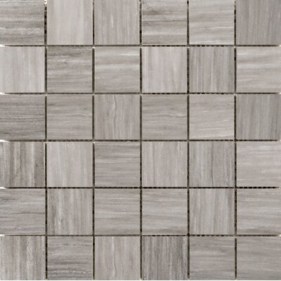 Latitude 2 x 2 Porcelain Mosaic Tile in Taupe