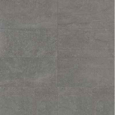 Uptown 24 x 47 Porcelain Field Tile in Washington Matte