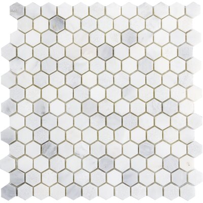 Winter Hex Mix 1 x 1 Marble Mosaic Tile in Frost