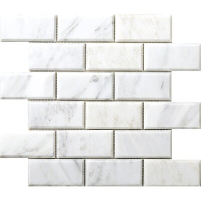 Winter Beveled 2 x 4 Marble Subway Tile in Frost