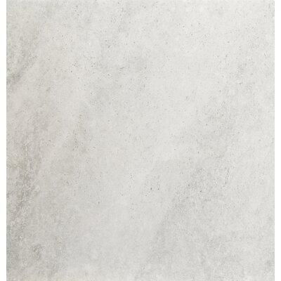 Trovata 20 x 20 Porcelain Field Tile in Diary