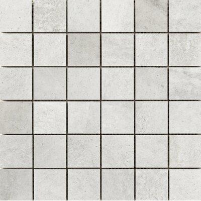 Trovata 2 x 2 Porcelain Mosaic Tile in Diary