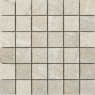 Trovata 2 x 2 Porcelain Mosaic Tile in Journal