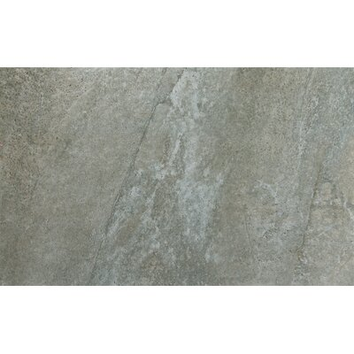 Trovata 12 x 24 Porcelain Field Tile in Ledger