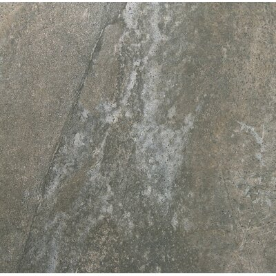 Trovata 20 x 20 Porcelain Field Tile in Scroll