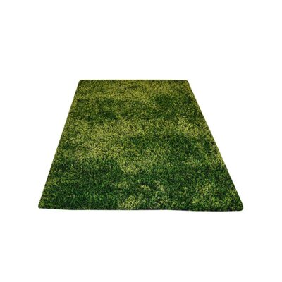 Sanford Solid Hand-Woven Green Area Rug Rug Size: Rectangle�6 x 9