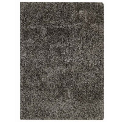 Danelle Hand-Woven Brown Area Rug Rug Size: Rectangle�6 x 9
