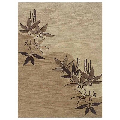 Olszewski Hand-Woven Light Brown Area Rug Rug Size: Rectangle�8 x 10