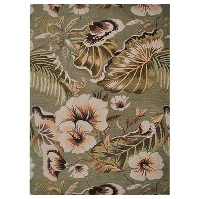 McArthur Hand-Woven Green Area Rug Rug Size: Rectangle�6 x 9