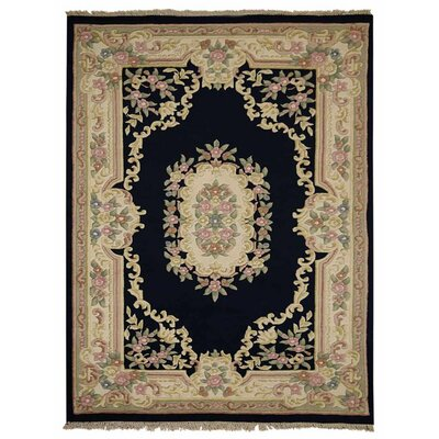 Hinnenkamp Hand-Woven Wool Navy Area Rug Rug Size: Rectangle 54 x 78