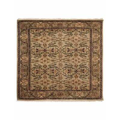 Olszewski Hand-Woven Wool Cream Area Rug Rug Size: Rectangle�3 x 5