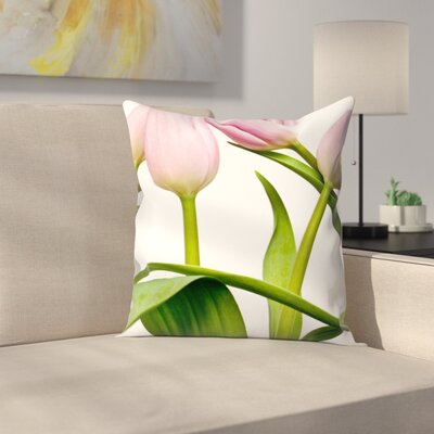 Maja Hrnjak Tulips2 Throw Pillow Size: 18 x 18