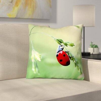 Duriel Double Sided Print Throw Pillow with Insert Size: 18 x 18
