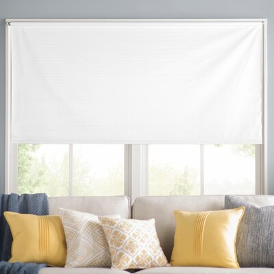 Wayfair Basics Room Darkening White Roller Shade Size: 73.25 W x 72 L