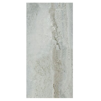 Amber 12 x 24 Porcelain Field Tile in Silver