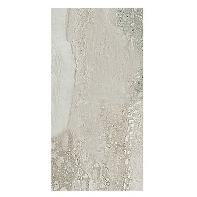 Amber 12 x 24 Porcelain Field Tile in Gray