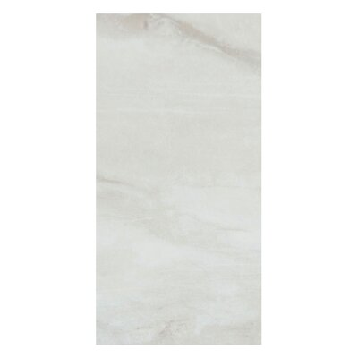 Pearl 12 x 24 Porcelain Field Tile in Silver