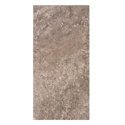 Tuscany 12 x 24 Porcelain Field Tile in Copper