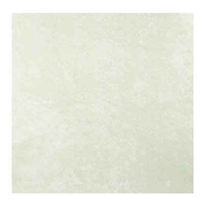 Marmol Marble 24 x 24 Porcelain Field Tile in Ivory