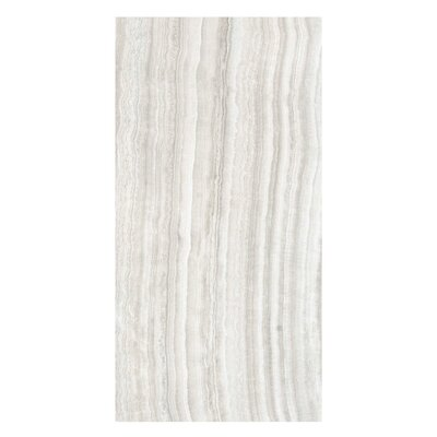 Velvet 12 x 24 Porcelain Field Tile in Sand