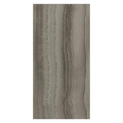 Velvet 12 x 24 Porcelain Field Tile in Mud