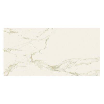 Marmi Matte 12 x 24 Porcelain Field Tile in Staturio Gold