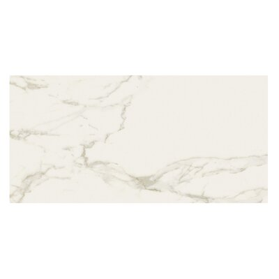 Marmi Pol 12 x 24 Porcelain Field Tile in Staturio Gold